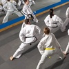 92% Off Youth and Adult Karate Classes