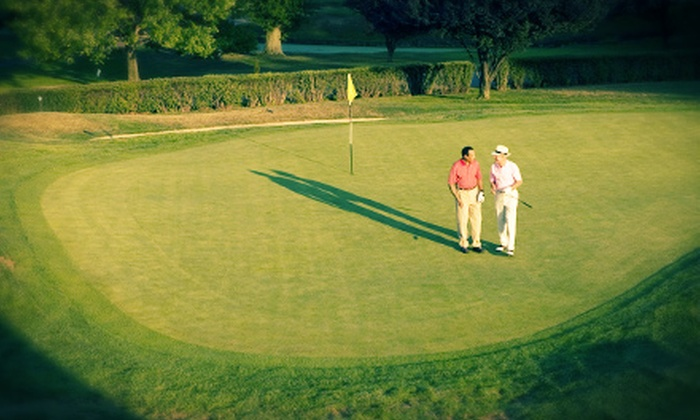 The Golf Boot Camp - Palmetto: One, Two, or Four 60-Minute Private Golf Video Lessons at The Golf Boot Camp (Up to 66% Off)