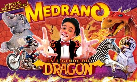 1 place en tribune dhonneur pour lune des représentations du Cirque Medrano à 10 € à Lyon