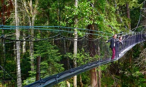UBC Botanical Garden: Admission to the Greenheart TreeWalk for One Person or a Family at UBC Botanical Garden (Up to 50% Off)