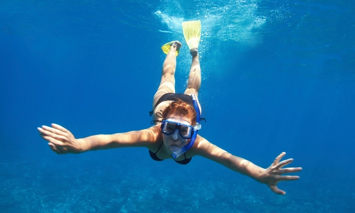 Boss Frog's Dive & Surf - Multiple Locations: Up to 62% Off Snorkeling Equipment Rental at Boss Frog's Dive & Surf