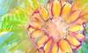 Sara Srubar-erb Art - Madera: $29 for $45 Worth of Gallery Visits — Sara Srubar-Erb Fine Artist