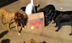 All Dogs Bark-n-play: Three Days of Pet Sitting Services from All Dogs Bark-N-Play (52% Off)