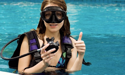 PADI Open-Water Scuba Certification Class for One or Two at International Scuba (Up to 46% Off)