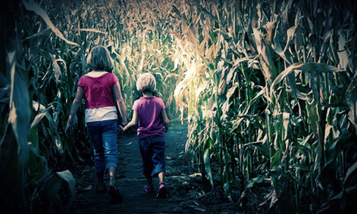 Westhaven Farm - Allentown: Flashlight Corn-Maze Visit for Two or Four with Donuts and Cider at Westhaven Farm (Up to 56% Off)