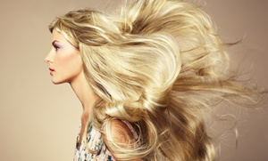 Amy Knight at Salon J : Haircut with Optional Color or Partial Highlights from Amy Knight at Salon J (Up to 55% Off)