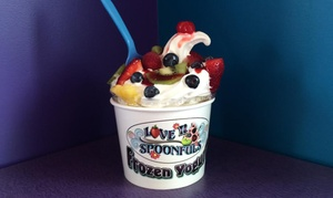 Love N Spoonfuls: $12 for $20 Worth of Frozen Yogurt or Smoothies at Love N Spoonfuls