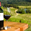 Up to 37% Off a Five-Hour Tour of Three Vineyards