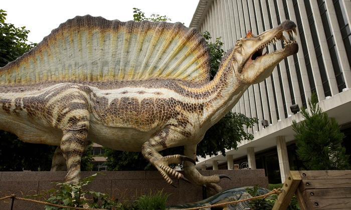 """National Geographic Live Speaker Series -National Geographic Live Speaker Series - """"Spinosaurus: Lost Giant of the Cretaceous"""" - Amoss Center: National Geographic Live — """"Spinosaurus: Lost Giant of the Cretaceous """" on April 7 at 7:30 p.m."""