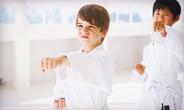 East West Team Martial Arts Philly - Martial Arts Hero Factory: 10 or 20 Children's or Adult Martial Arts Classes with a Uniform at East West Team Martial Arts Philly (Up to 81% Off)