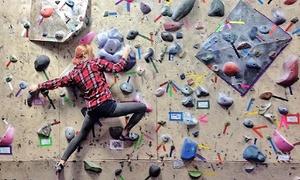 Climbnasium: Indoor Boulder Climbing at Climbnasium (Up to 60% Off). Three Options Available.