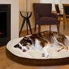 Deluxe Foam Core Faux Sheepskin and Suede Orthopedic Pet Mattresses