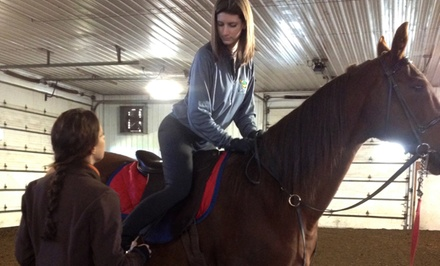 One or Two One-Hour Horseback-Riding Lessons at La Fleur Stables (Up to 50% Off)