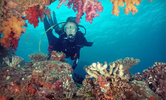Bluewater Divers - Downtown Oklahoma City: Discover Scuba Experience for One, Two, or Four from Bluewater Divers (Up to 65% Off)