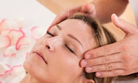 GROUPON: 79% Off Acupuncture Treatment and Initial Consultation Better Life Chiropracting And Acupuncture