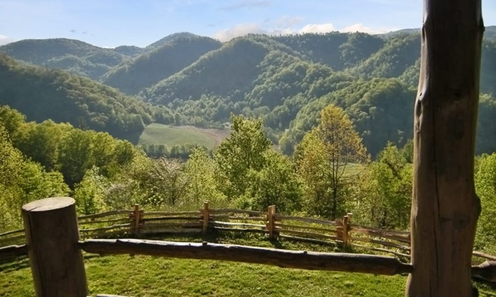 Three Bear Holler - Clyde, NC: $179 for a 2-Night Cabin Stay with a Welcome Basket at Three Bear Holler ($417 Value)