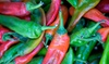 Roosevelt Row Chile Pepper Festival - Phoenix Public Market: Food and Drinks at Roosevelt Row Chile Pepper Festival on September 26 (Up to 39% Off). Three Options Available.