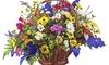 Ladybug Florist - Worcester: $55 for $100 Worth of Gift Baskets — Ladybug Florist