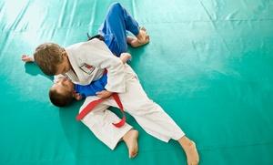 PTC Combat Fitness: One Month of Unlimited Kickboxing or Kids' Brazilian Jiu Jitsu Classes at PTC Combat Fitness (Up to 65% Off)