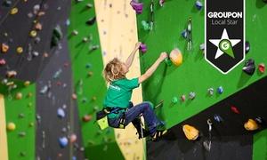 Wiesbadener Nordwand: Schnupperkurs Klettern mit Trainer und Leih-Equipment im Indoor-Kletterwald der Wiesbadener Nordwand ab 7,50 €