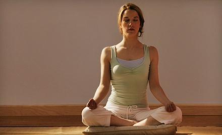 10 or 20 Yoga or Pilates Classes at Jayadeva Yoga Schools (Up to 61% Off)