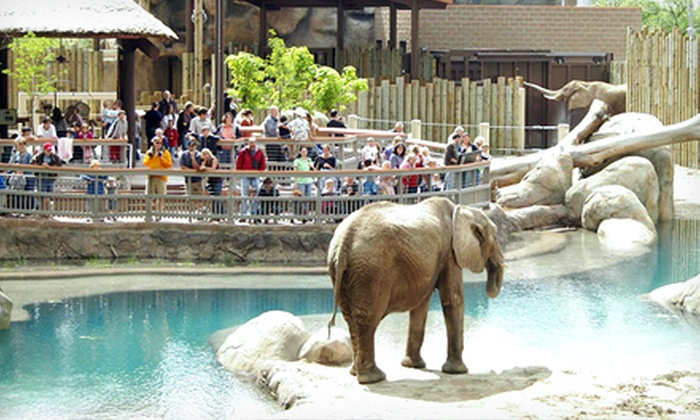 Visit Salt Lake - Multiple Locations: 365-Day Connect Pass Valid for 13 Attractions Including Zoos, Museums, and More from Visit Salt Lake (Up to 24% Off)