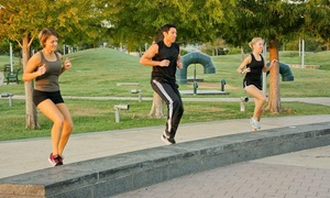 Sherpa Fitness: Eight or Four Weeks of Unlimited Fit Camps from Sherpa Fitness (Up to 83% Off)