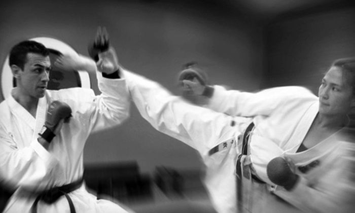 Fonseca Martial Arts - Lakeview: 5, 10, or 15 Adult or Children's Karate Classes at Fonseca Martial Arts (Up to 85% Off)