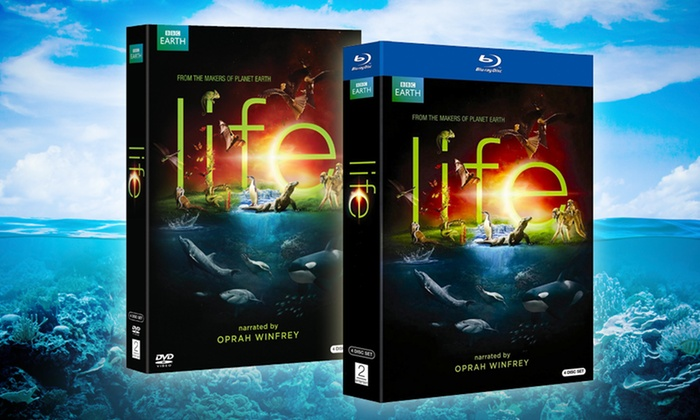 BBC Life 4-Disc DVD or Blu-ray Set Narrated by Oprah Winfrey : BBC Life 4-Disc DVD or Blu-ray Set Narrated by Oprah Winfrey