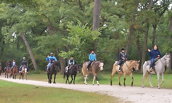 Sarah's Stables, INC - Little Palestine: $23 for a One-Hour Horseback-Riding Session for One at Sarah's Stables, Inc ($40 Value)
