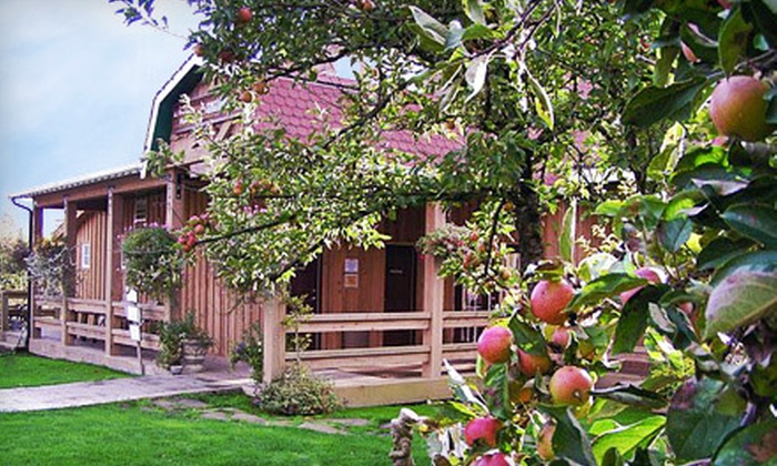 Merridale Ciderworks Corp. - Cobble Hill: $20 for a Sunday Orchard Outing with Brunch for Two at Merridale Ciderworks Corp. in Cobble Hill (Up to $40 Value)