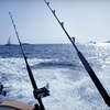 Up to 43% Off Striped-Bass-Fishing Trips