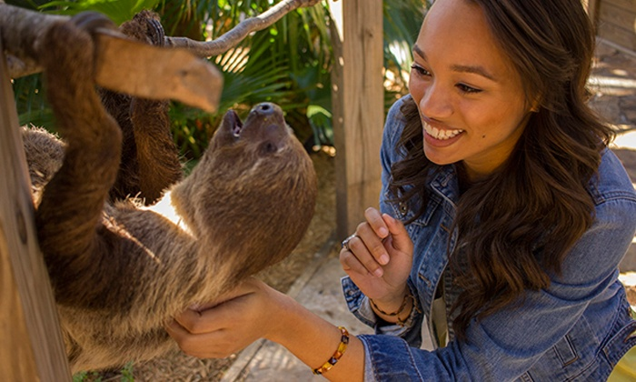 Wild Florida - Saint Cloud: Wildlife-Park Outing with Lunch for Two or Four at Wild Florida (Up to 40% Off)