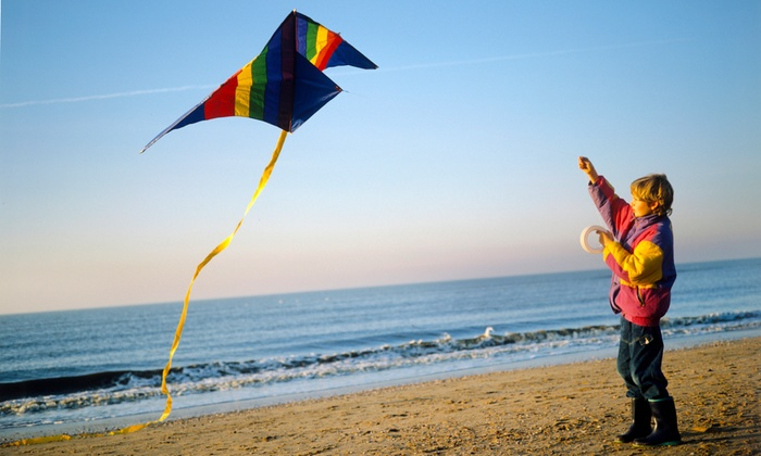 Just Kidding - Solvang: $26 for a Sport Stunt Kite at Just Kidding ($44 Value)