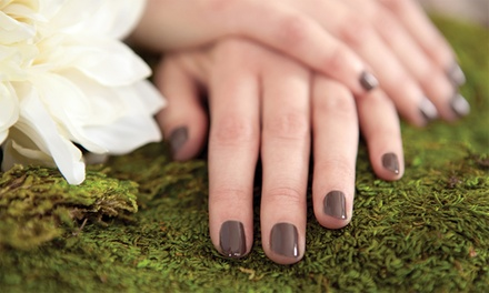 Up to 49% Off Shellac Manicures with Paraffin Wax