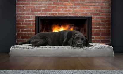 Furhaven Dog Beds Furniture Deals Discounts Groupon