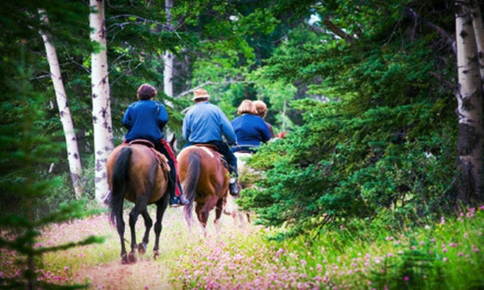 Stone River Farms - Weatherford Northwest: Horseback-Riding Outing with Lesson and Trail Ride for 1, 2, or 4, or Three Lessons at Stone River Farms (Up to 69% Off)
