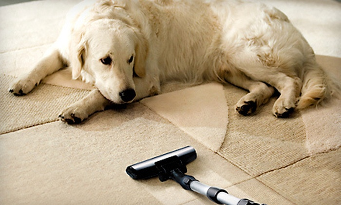 Steam Solutions - Goose Island: Three-Room or Whole-House Carpet Cleaning from Steam Solutions (Up to 54% Off)