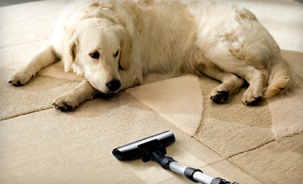 3 Rooms of Carpet Cleaning (a $105 value)  - Steam Solutions in