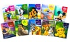 Disney 10-Storybook Collection: Set of 10 Padded Disney Storybooks