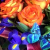 C$15 for C$30 Worth of Flowers at Kensington Florist