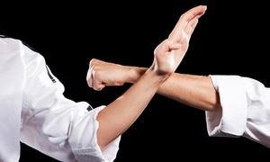 Kickboxing Seekonk: Five or Ten Martial Arts Classes  at  Kickboxing Seekonk (Up to 88% Off)