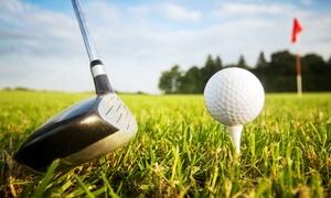 Golf in Wall GmbH + Co. KG: DGV-Platzreifekurs an nur 2 Tagen für 1 oder 2 Personen bei Golf in Wall (bis zu 75% sparen*)