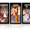 NBA Player Profile Wall Art by Steiner Sports