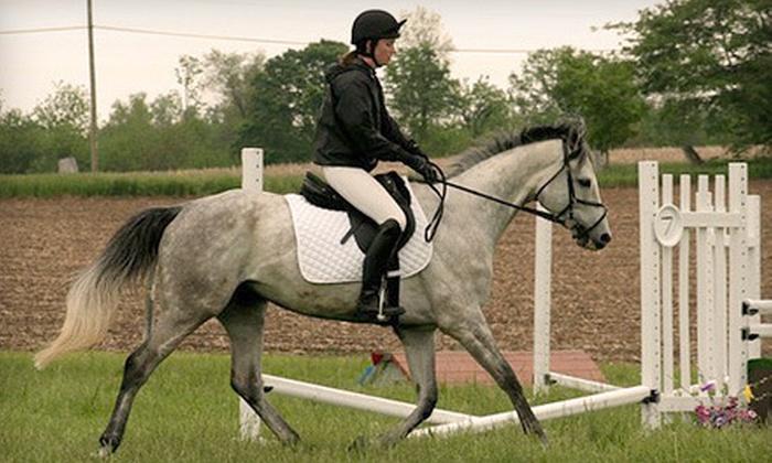 Horse Engineer - Clark: One Horseback-Riding Lesson or Horseback-Riding Lesson at Horse Engineer in Greenwood (Up to 53% Off)