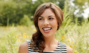 Silverman Institute of Cosmetic Dentistry: Dental and EasySmile Veneer Package at Silverman Institute of Cosmetic Dentistry (Up to 93% Off). Two Options.