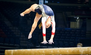 University of Arizona Gymnastics: University of Arizona Women's Gymnastics Meets on January 8 and 23