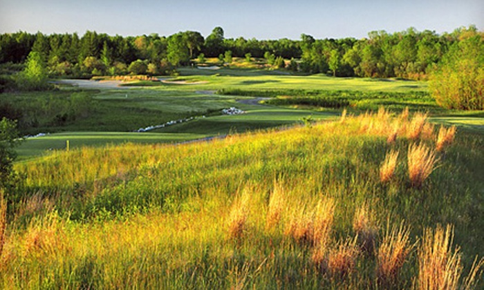 The Bog - Saukville: $30 for $60 Worth of Greens Fees and Cart Fees at The Bog