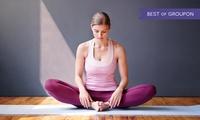 12 Monate Online-Videokurs Yoga und Meditation bei Lecturio(67% sparen*)