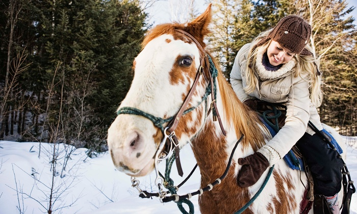 Green Acres Ranch - St. John: 60-Minute Indoor Horseback-Riding Lesson for Two or Four at Green Acres Ranch (Up to 51% Off)